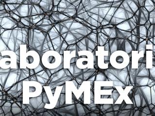 19/09 | #Taller - Laboratorio PyMEx: El poder de la neurociencia en la exportación