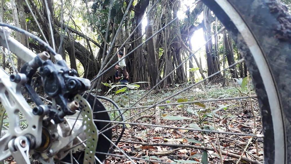 Biking tours nearby Leticia, Amazonas Colombia