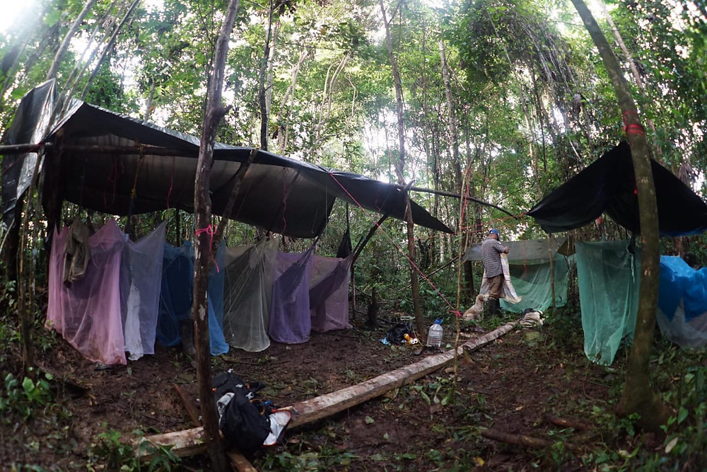 Amazon Rainforest camp in Colombia.