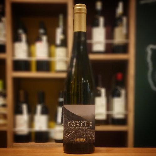 "Trentino DOC Muller Thurgau ""Vigna delle Forche"" / Cembra トレンティーノDOC ミュラー トゥルガウ ""ヴィーニャ デッレ フォルケ"" / チェンブラ"