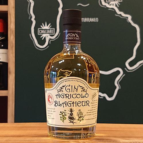 """Gin Agricolo """"Blagheur"""" 700ml / Franco Cavallero ジン アグリーコロ """"ブラゲール"""" 700ml / フランコ カヴァッレーロ"""