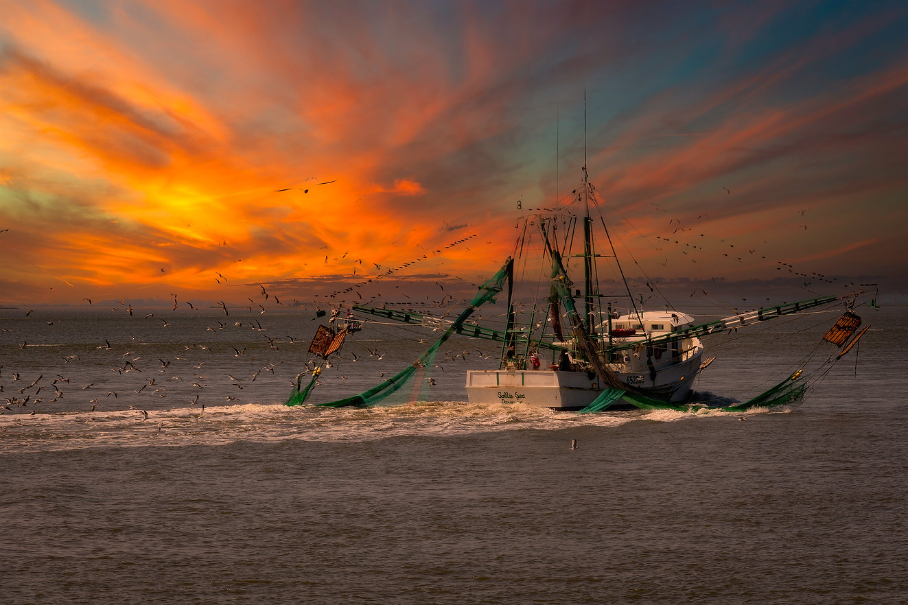 Shrimo Boat.jpg