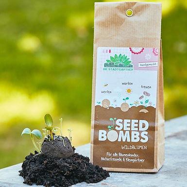 Wildblumen Samenbomben