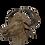 Thumbnail: Bronze Tête de buffle