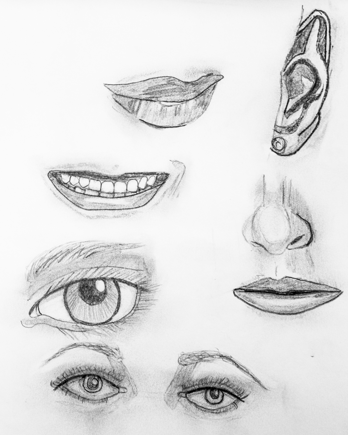 website_sketchbook-2.jpg