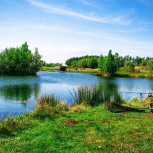 Well Stocked fishing lakes on site