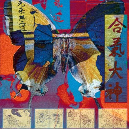 Aikido Series Warrior Books_edited.jpg