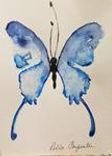 blue butterfly (Copy).jpg