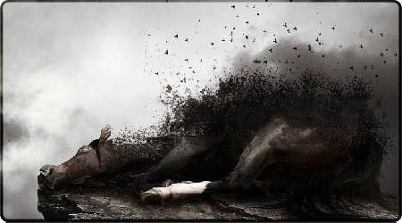 حقائق حول الموت - الجزء الثانى