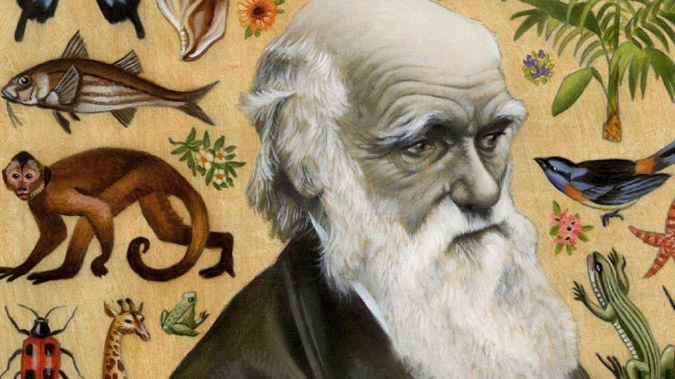 داروين التطور وأصل الانواع