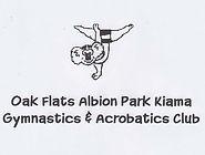 Oak-Flats-Albion-Park-Gymnastics.jpg