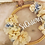 Thumbnail: Bastidor Flores porta alianzas