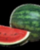 paladin Καρπούζι _ Υβρίδια _ Σπόροι _ Αγ