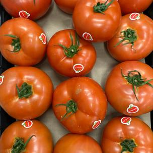 Τομάτες απο την Κρήτη