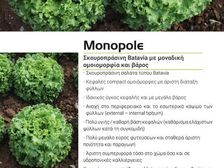 Batavia MONOPOLE