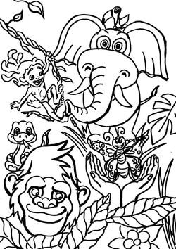 Dschungel inspired by Original Beans