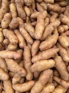 potato_ruby crescent_IMG_0129.jpg