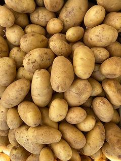 potato_butterball_IMG_0139.jpg