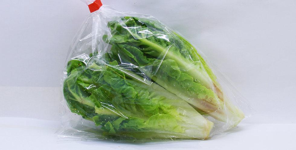 Romaine Lettuce Pack