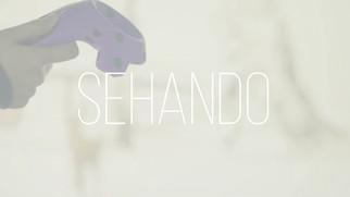 SEHANDO