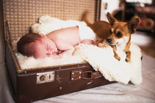 Familie Fotografering Mandal fotograf Iselinn Andersen nyfødt