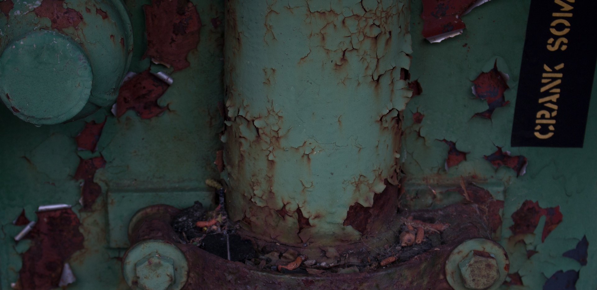 Rusty Green.png