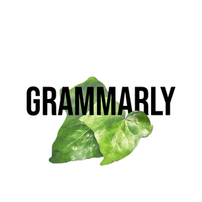 grammarly copy.png