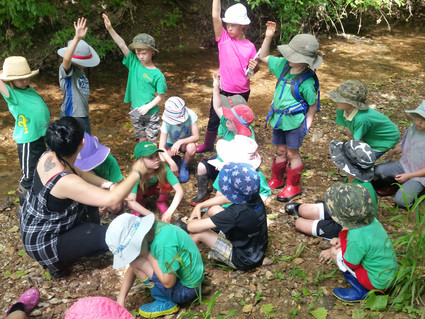 The Rhythm of Forest School