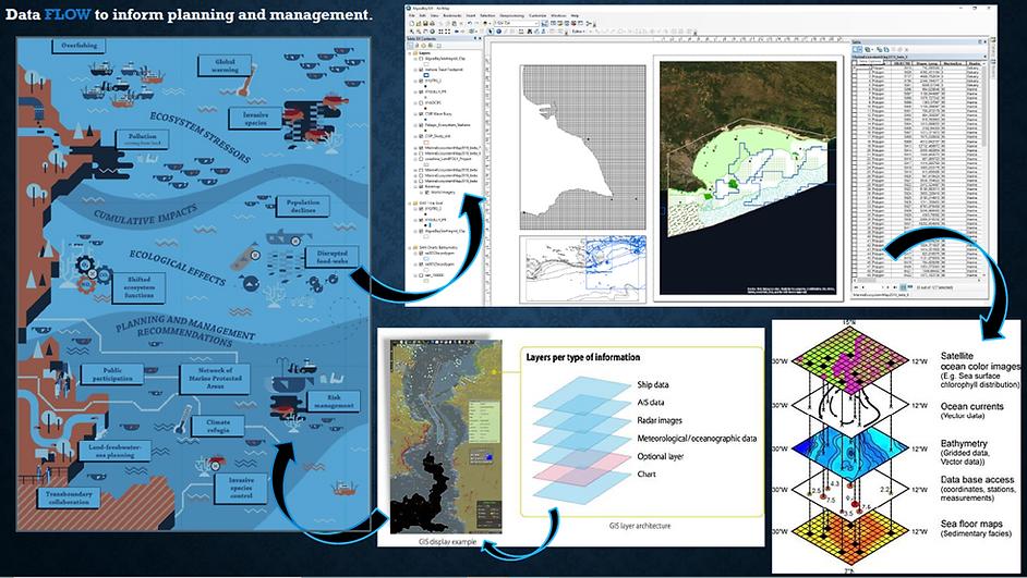 WP2_GIS_dataflow.png
