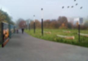 wizka1.jpg