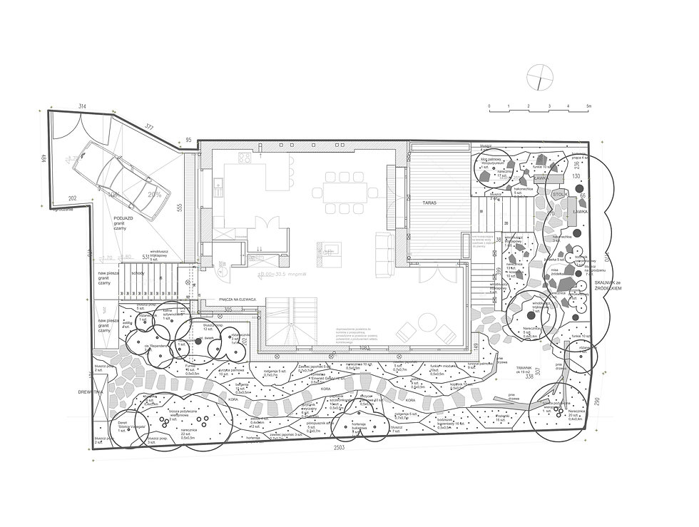 projekt ogrodu naruszewicza_rzut_profesj