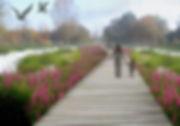wizka2.jpg