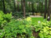 ogrod warszawa magdalenka piaseczno ziel