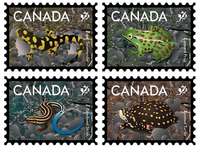 Stamp of Endangered Animals