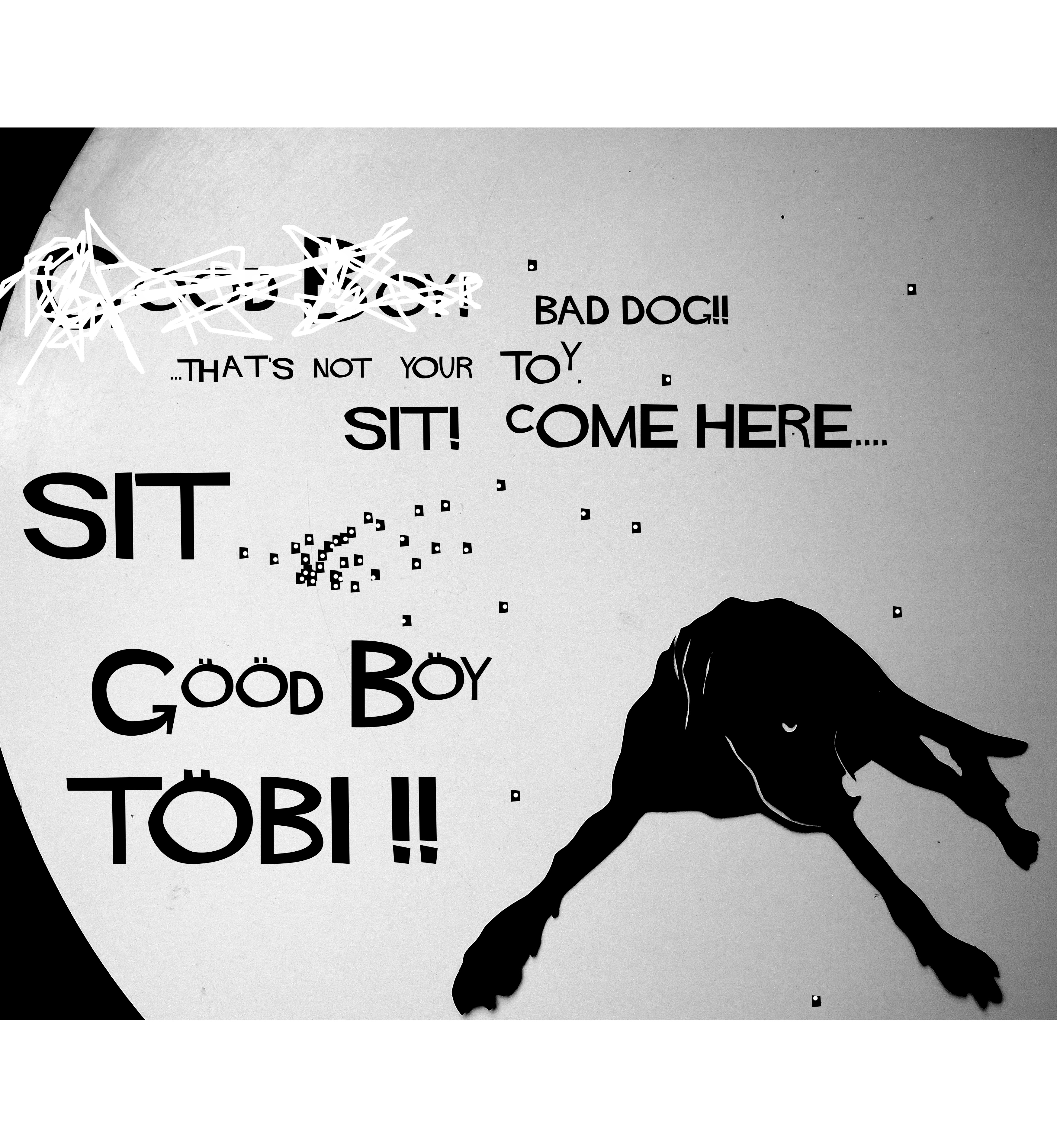 tobi good boy