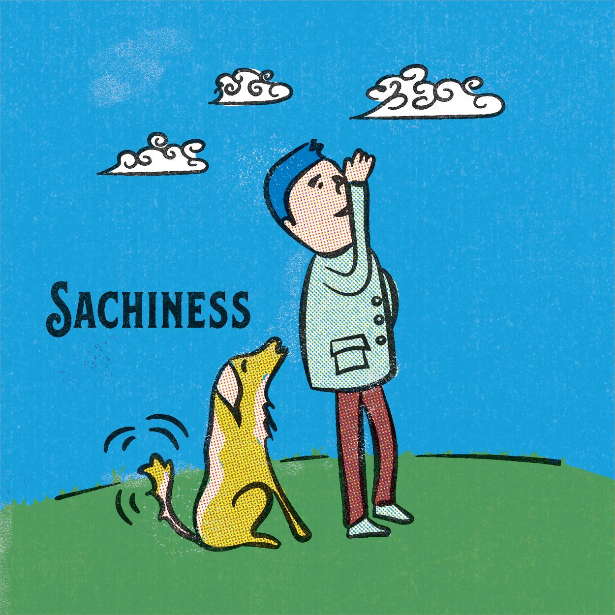 Sachiness