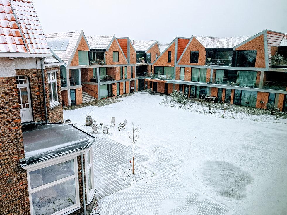 SH_Sneeuw.jpg
