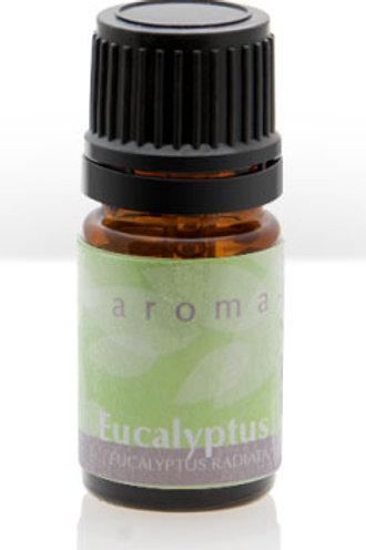 EUCALYPTUS(organic)