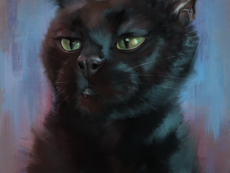 """Black Cat Portrait Painting"" by Jonathan Hopkins"