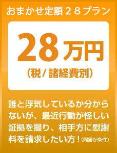 PACK28.jpg
