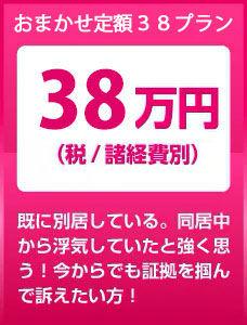 PACK38.jpg