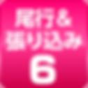 icon_BikouHarikomi6_220x220.png