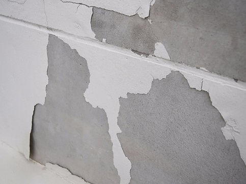 mold-wall-1-4d7.jpg