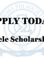 Viele Scholarship Announcement