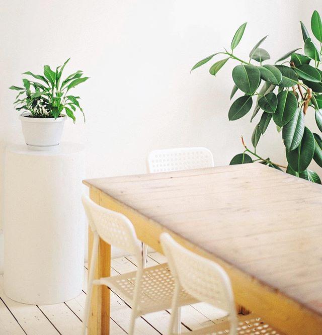 Самый Светлый зал в нашем доме. 🌿 Прекрасное решение для небольших мастер-классов и деловых встреч