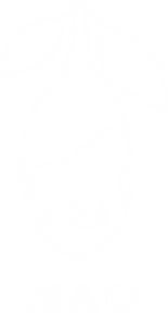 BAO Logo Vektor CMYSK Kopie.png