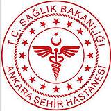 Ankara City Hospital.jpg