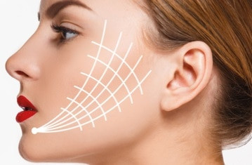 Thread Facelift Training Course