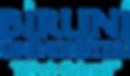 Biruni_Uni_Logo.png