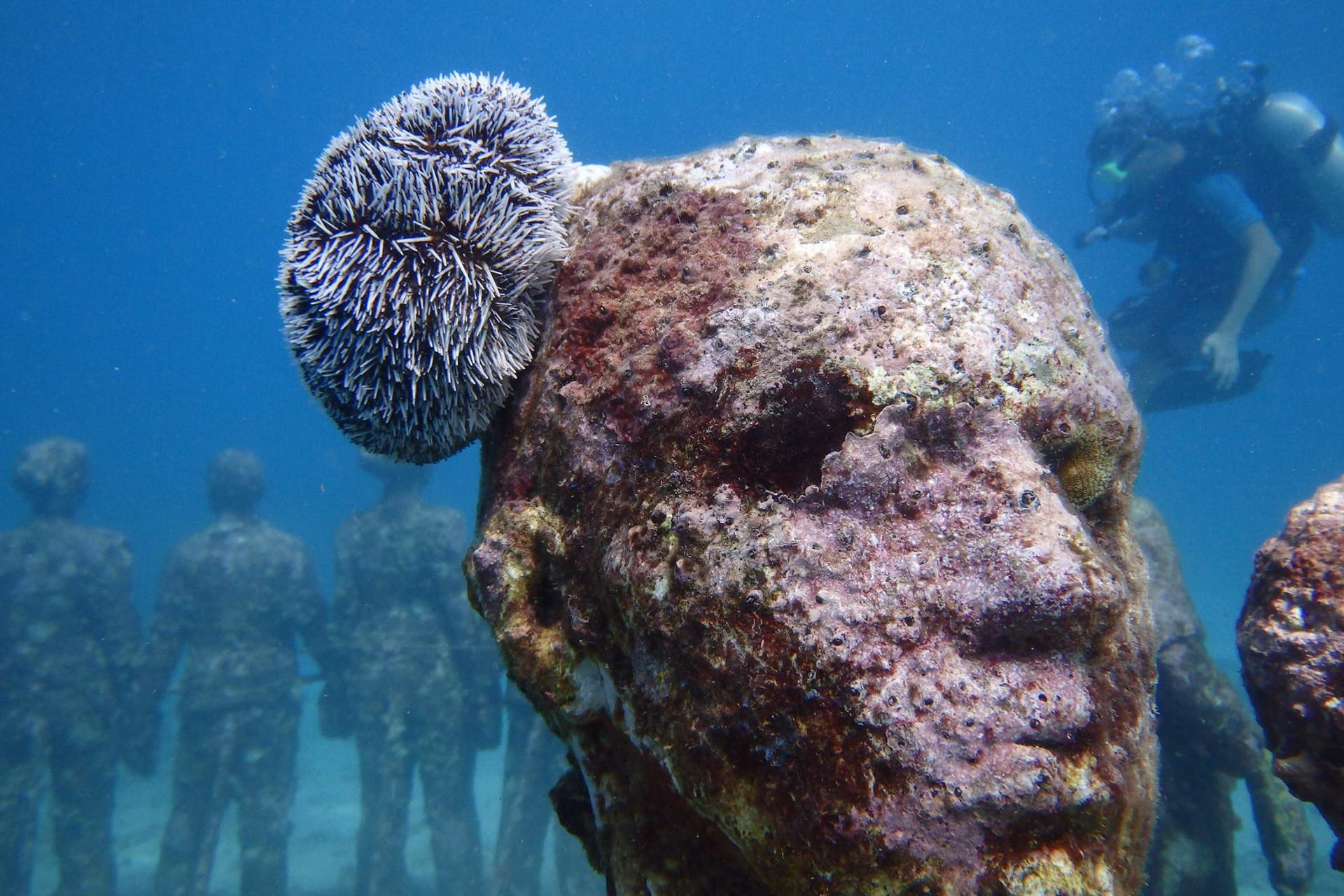 statue sous marine, snorkeling, plongée sous marine, dive, scuba, grenade, croisiere Grenadines, Jason de Caires Taylor